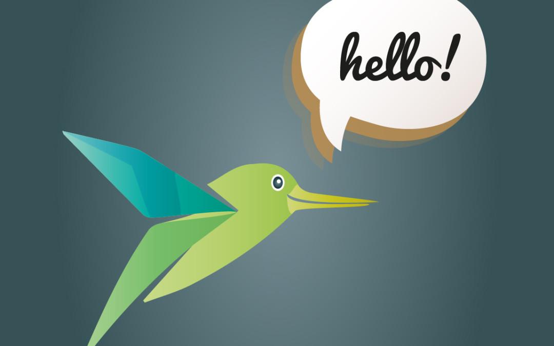 Our cabala – hummingbird